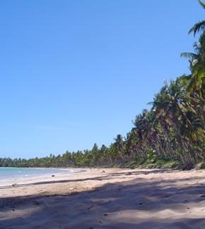 praia Garapua