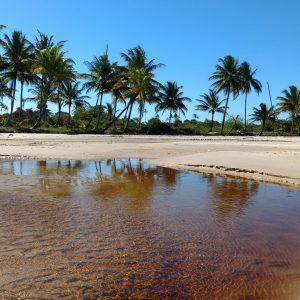 Passeio Praia da Gamboa e Ilha da Coroa em Morro de São Paulo